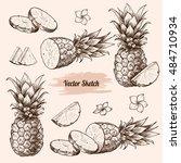 vector pineapples hand drawn... | Shutterstock .eps vector #484710934