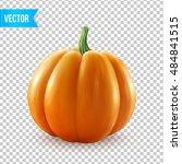 Realistic Vector Pumpkin...