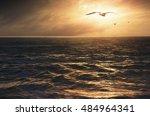 inspiring ocean view with flock ...   Shutterstock . vector #484964341
