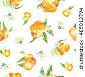 watercolor pattern orange fruit | Shutterstock . vector #485012794