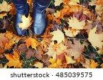 woman legs in black shoes... | Shutterstock . vector #485039575