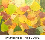 background from multi coloured... | Shutterstock . vector #48506401