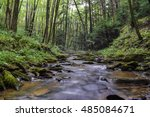 Small photo of A small freestone mountain stream full of native Brook Trout in the Allegheny Mountains of Pennsylvania.