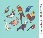 bird  vector outline... | Shutterstock .eps vector #485087059