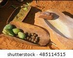 bush tucker food from australia | Shutterstock . vector #485114515
