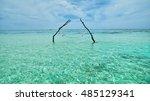Empty Over The Sea Hammock In...