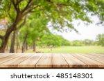 empty wooden table with garden... | Shutterstock . vector #485148301