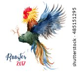 watercolor bright rooster  cock ... | Shutterstock . vector #485151295
