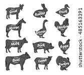 farm animals vector collection. ... | Shutterstock .eps vector #485163391