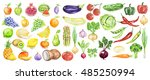 watercolor fruit and vegetables ... | Shutterstock . vector #485250994