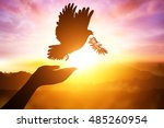 silhouette pigeon flying out of ... | Shutterstock . vector #485260954