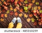 Happy Child Lying On Autumn...