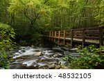 Bridge Over Mountain Stream In...