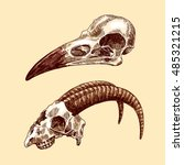 vector sketch illustration ... | Shutterstock .eps vector #485321215