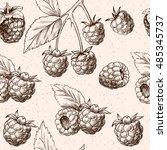 juicy raspberries. vector... | Shutterstock .eps vector #485345737