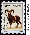Small photo of POLAND - CIRCA 1986: A stamp printed in Poland shows argali or mountain sheep - Ovis ammon, curca 1986