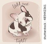 little cute  bulldog    Shutterstock .eps vector #485442361