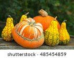 Six Autumn Halloween Pumpkins...