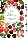 vector mix berry vertical... | Shutterstock .eps vector #485496151