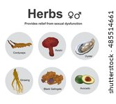 chinese herbology is the theory ... | Shutterstock .eps vector #485514661