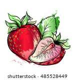 hand drawn watercolor painting... | Shutterstock .eps vector #485528449