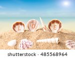 sea shell decorate with love...   Shutterstock . vector #485568964