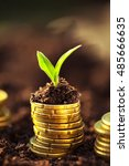 golden coins in soil with young ... | Shutterstock . vector #485666635