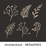 ornament and rustic leaf icon.... | Shutterstock .eps vector #485669401