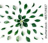 green leaves pattern on white... | Shutterstock . vector #485719837
