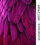 Macro Photograph Of The Purple...