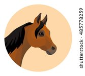 vector brown arabian horse head ... | Shutterstock .eps vector #485778259