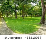 green grass and many of trees... | Shutterstock . vector #485810089