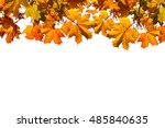 autumn background with maple... | Shutterstock . vector #485840635