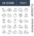 set vector line icons in flat... | Shutterstock .eps vector #485902711