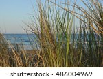 beach with sea and grass on a... | Shutterstock . vector #486004969