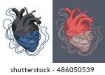 stylized illustration of heart... | Shutterstock .eps vector #486050539