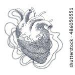 stylized illustration of heart... | Shutterstock .eps vector #486050551