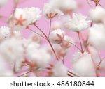 white flower on pink background.... | Shutterstock . vector #486180844