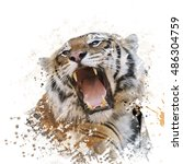 Digital Painting Of Tiger...