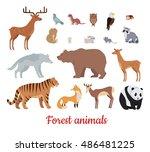 forest animals set. deer  bear  ... | Shutterstock .eps vector #486481225