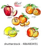 hand drawn watercolor painting... | Shutterstock .eps vector #486483451