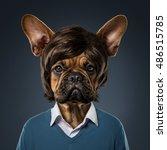 Cute Bulldog Portrait With...