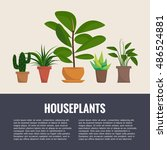 flat style house plants and... | Shutterstock .eps vector #486524881