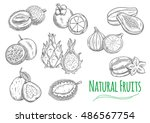 exotic and tropical fruits....   Shutterstock .eps vector #486567754