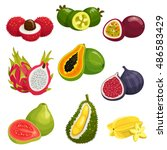 tropical and exotic fruits... | Shutterstock .eps vector #486583429