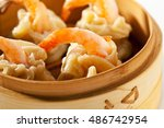 asian style dumpling   gyoza in ... | Shutterstock . vector #486742954