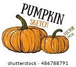 doodle pumpkins.vector paint... | Shutterstock .eps vector #486788791