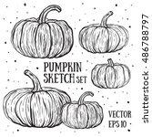 doodle pumpkins.vector paint... | Shutterstock .eps vector #486788797