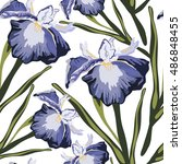 seamless pattern with iris... | Shutterstock .eps vector #486848455