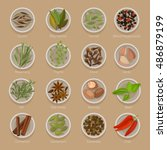 spice or seasoning on plates... | Shutterstock .eps vector #486879199